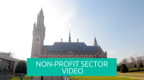 non-profit sector video, NGO video